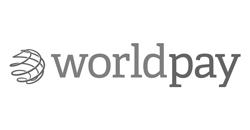 Worldpay image